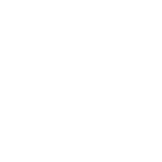 4 Wheel Dance